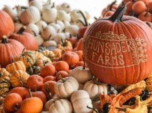 10/10-10/25 Hunsader Farms Pumpkin Festival